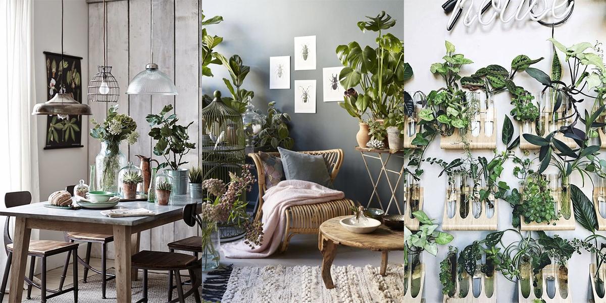 Inspiratie voor je urban jungle in huis