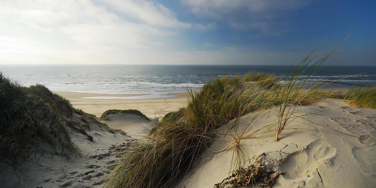 De mooiste stranden ter wereld: Noordzeestrand Schiermonnikoog