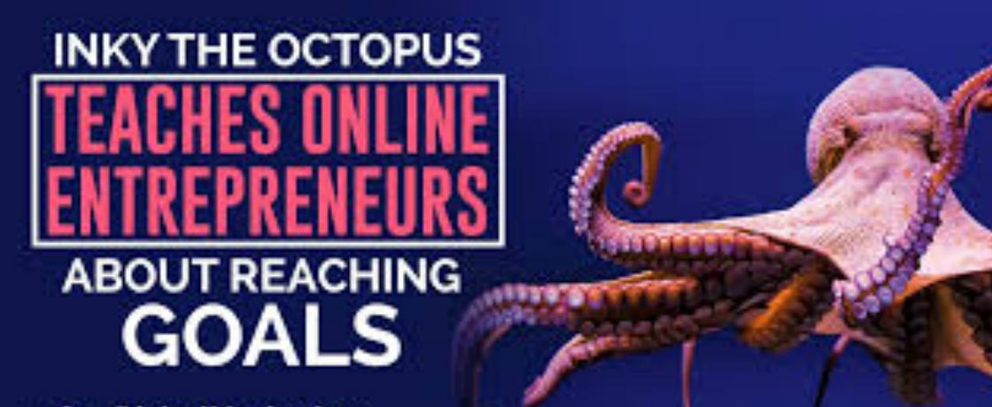 Dit zijn de slimste dieren ter wereld: Octopus Inky