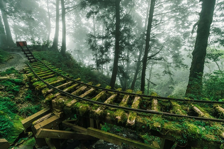 7X de natuur wint het van de mens en dat levert deze mooie beelden op, Taiwan