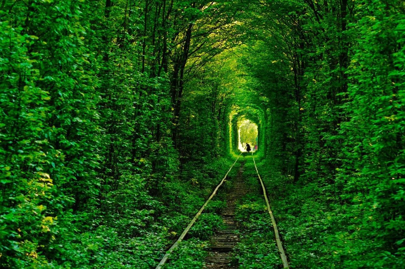 5 prachtige tunnels die door de natuur zelf zijn gemaakt - Tunnel of love in Oekraine