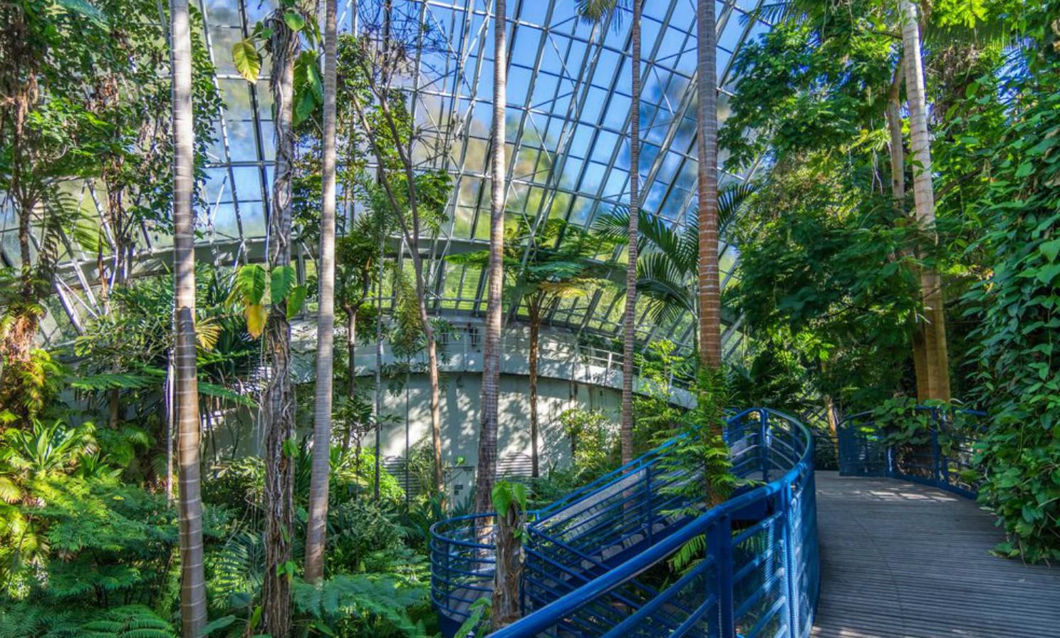 De 10 mooiste greenhouses ter wereld - Bicentennial Conservatory in Adelaide Australie