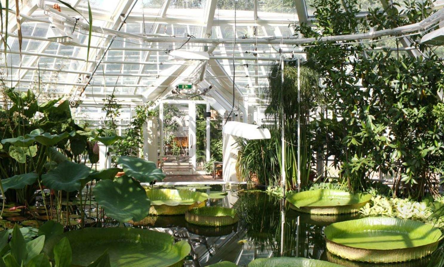 De 10 mooiste greenhouses ter wereld -
