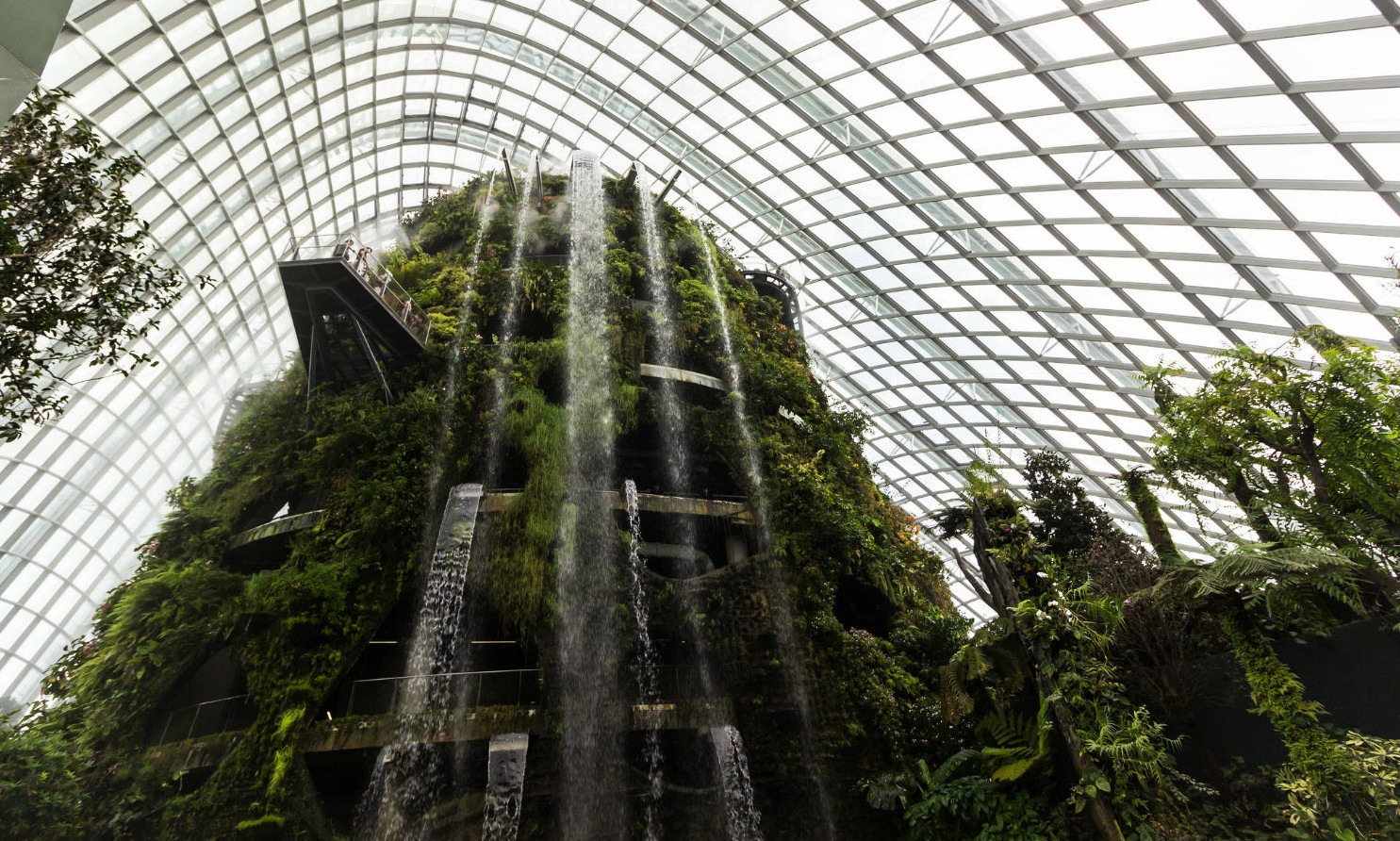 De 10 mooiste greenhouses ter wereld - Cloud Forest in Singapore