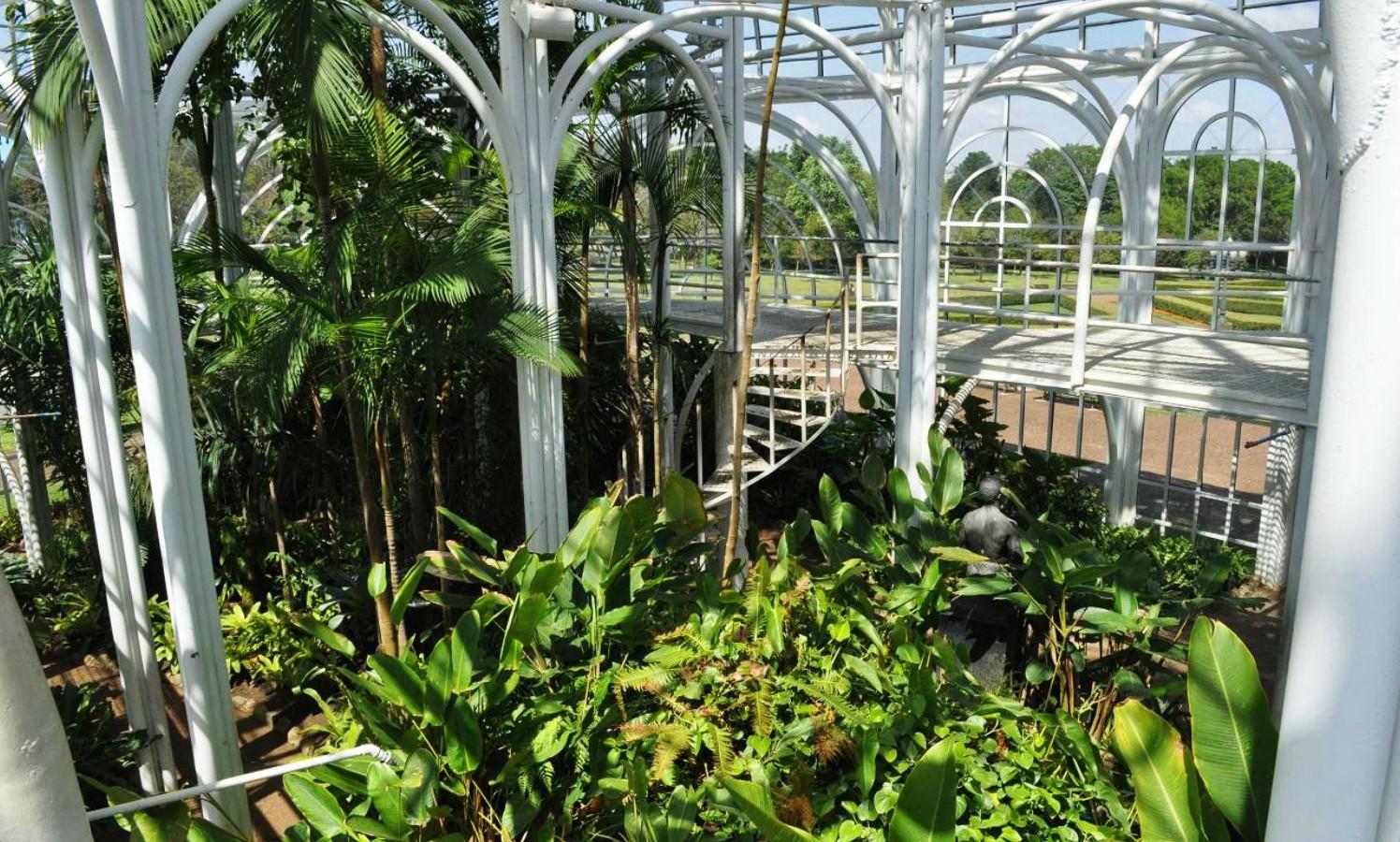 De 10 mooiste greenhouses ter wereld - De Botanische Tuin van Curitiba in Brazilië