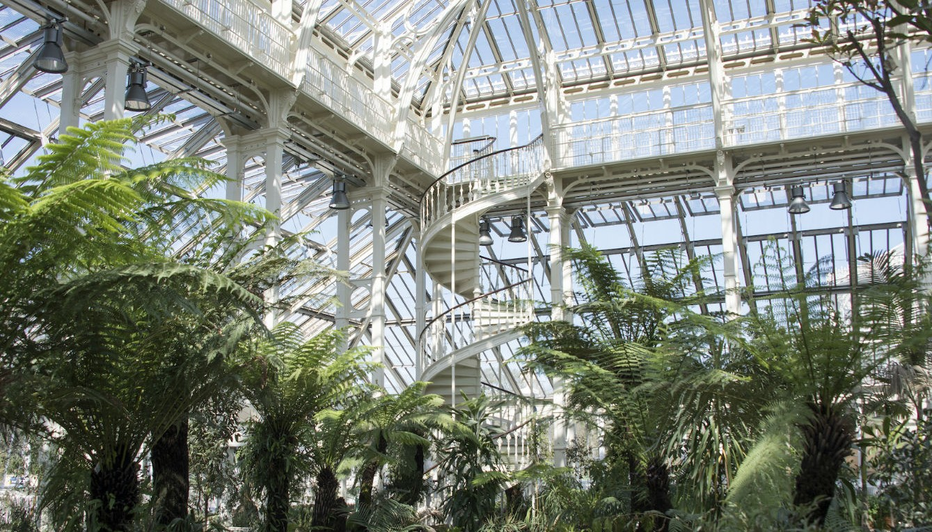 De 10 mooiste greenhouses ter wereld - The Temperate House